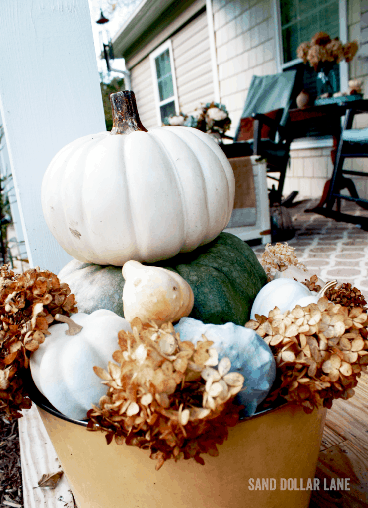 Pumpkin stack with seashells and dried hydrangeas