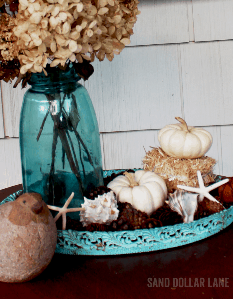 White pumpkin and starfish go perfectly together!